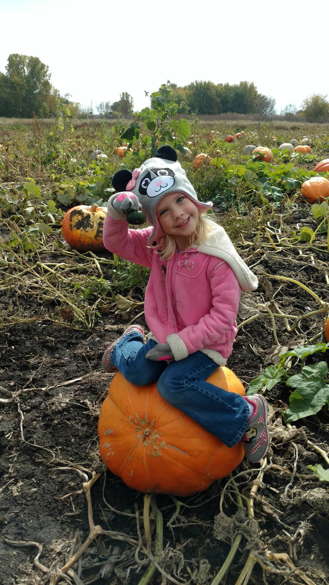 Student sitting on a pumpkin