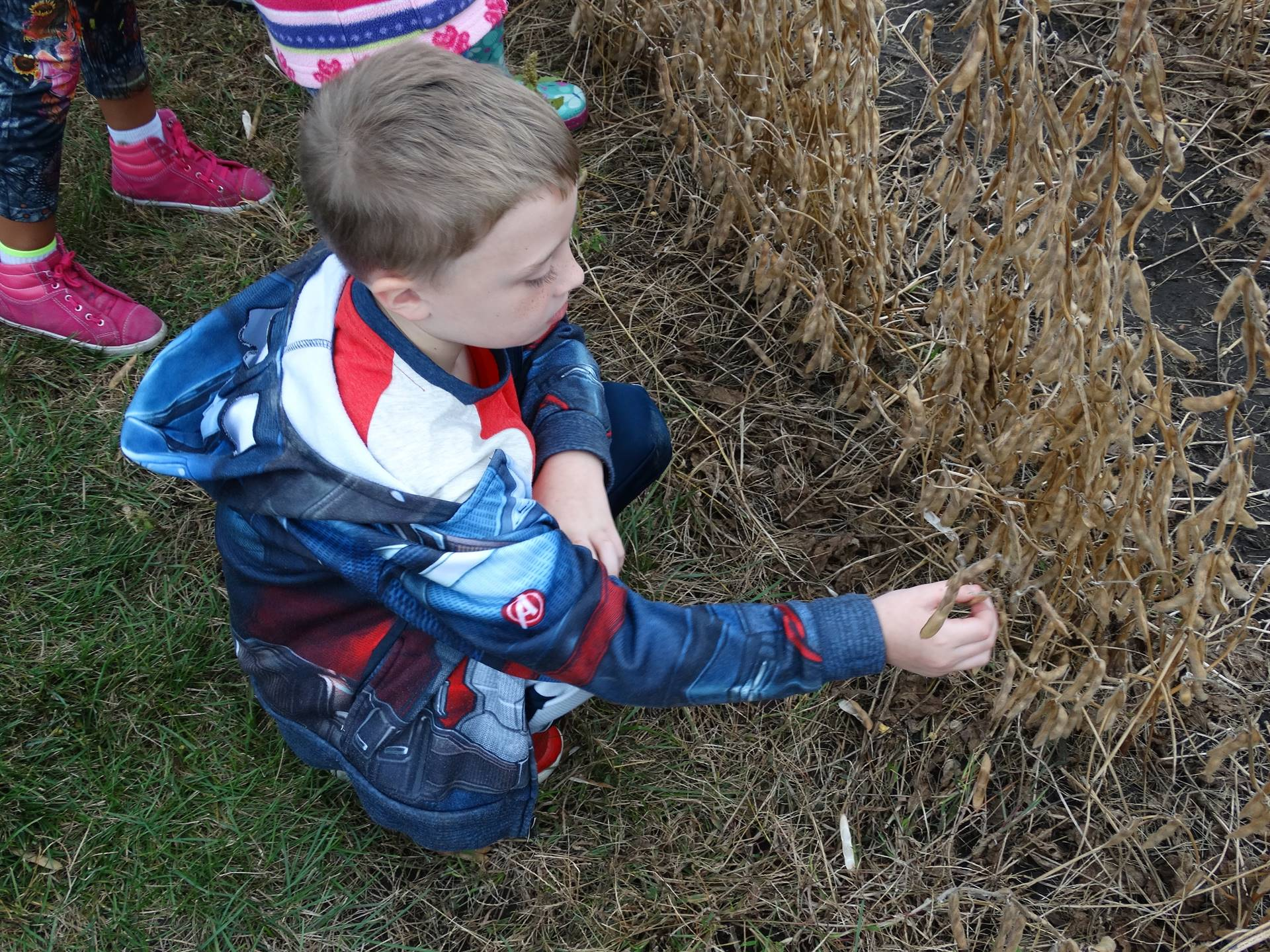 GHV first grader looking at a field during a field trip to a farm