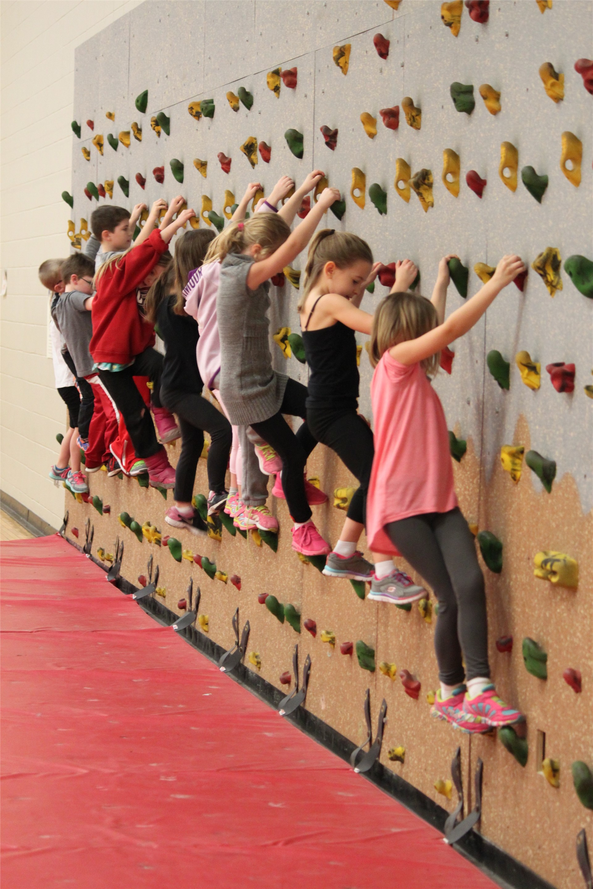 Elementary students climbing a rock wall