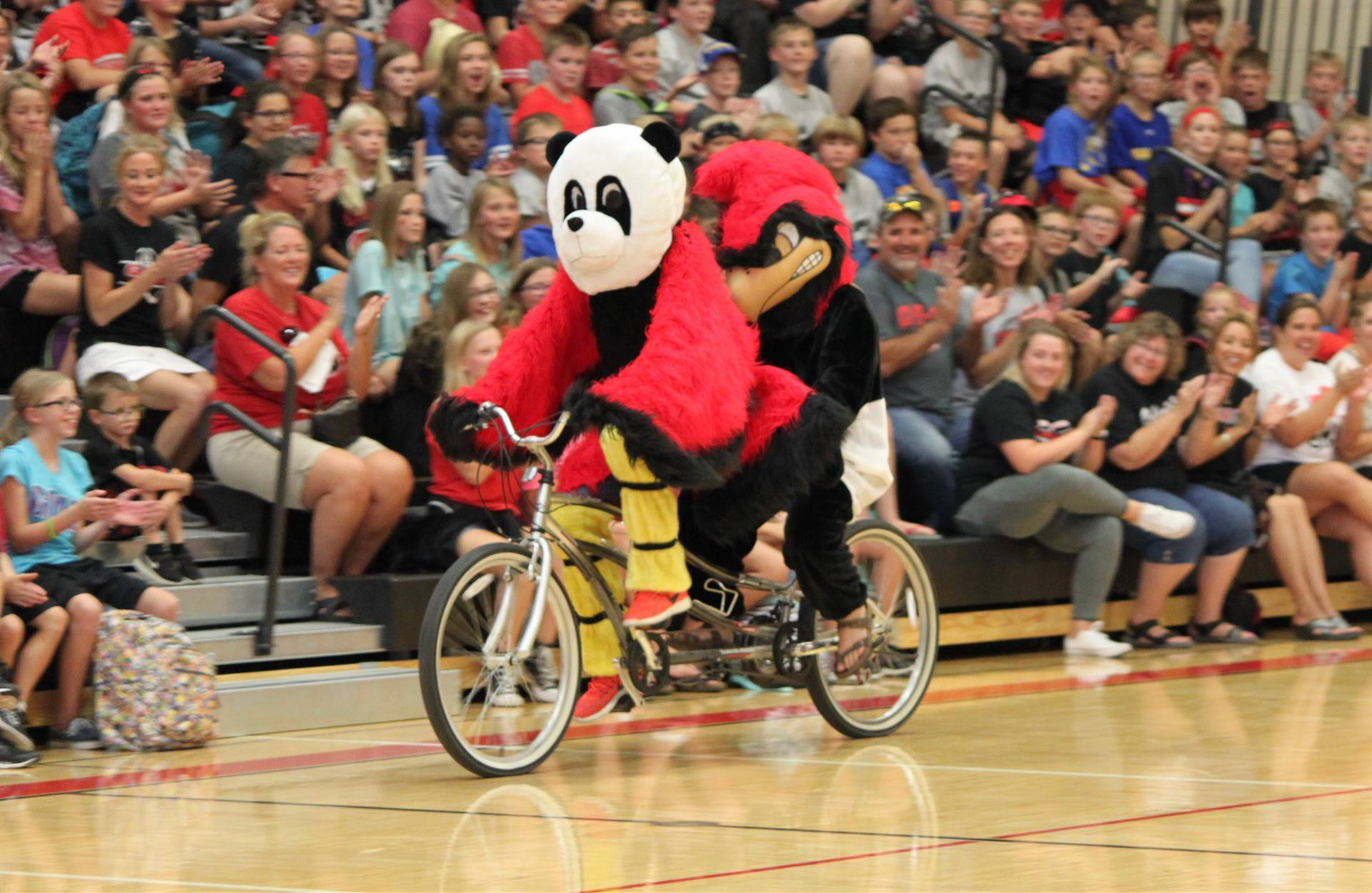 Homecoming pep rally photo of mascots