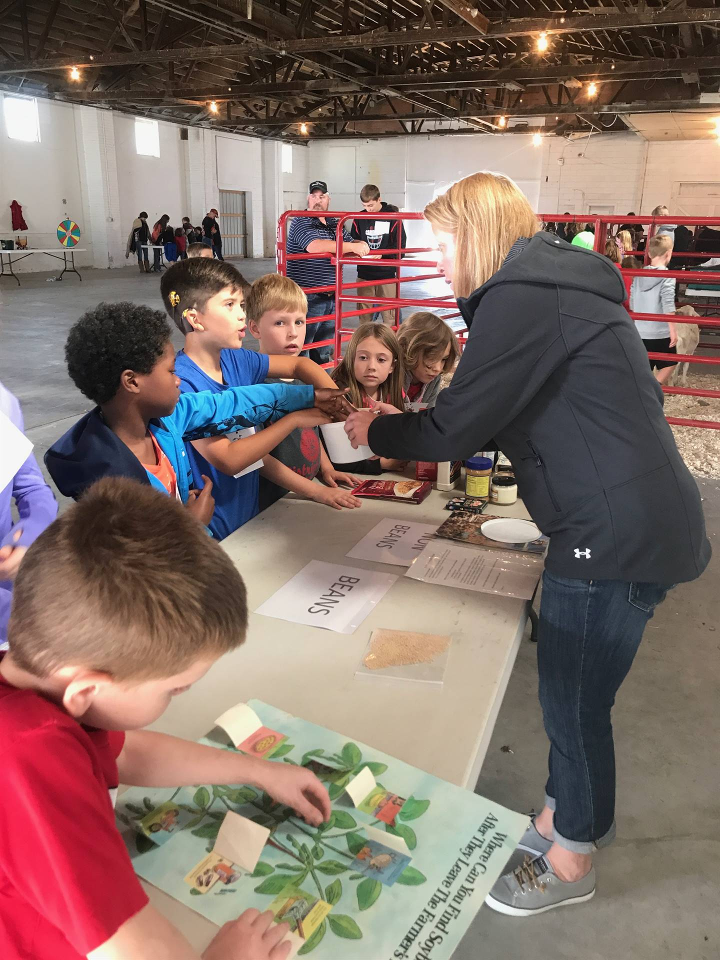 Students standing at table examining soybeans at Ag Awareness Day