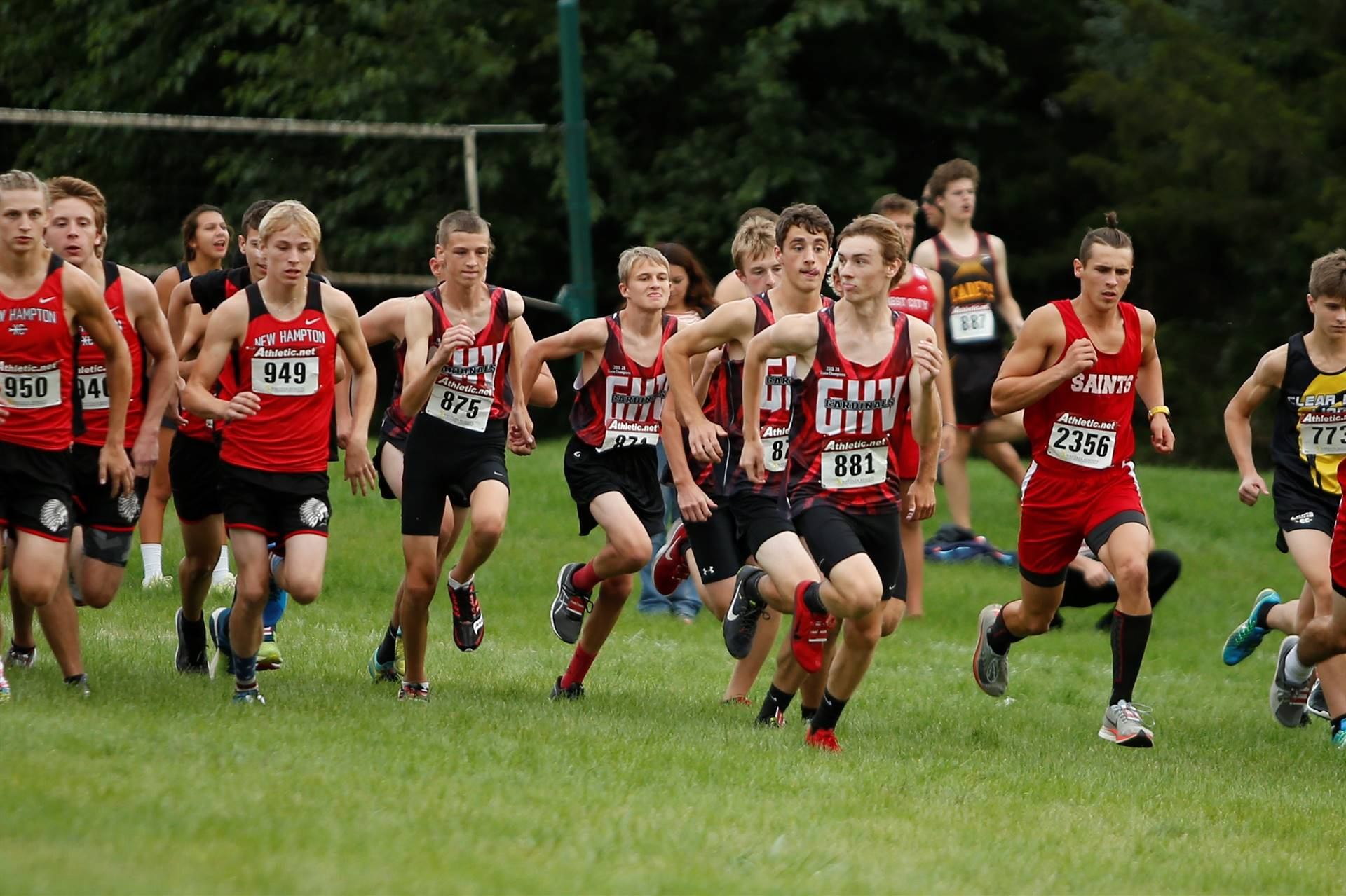 Several cross country runners beginning the race