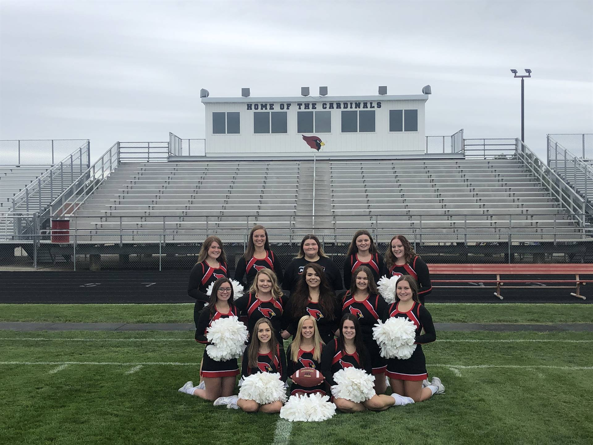 cheerleaders posing for a team pic on the football field